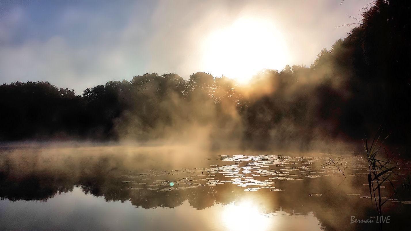 Bernau Einen Herbstlichen Guten Morgen Zusammen