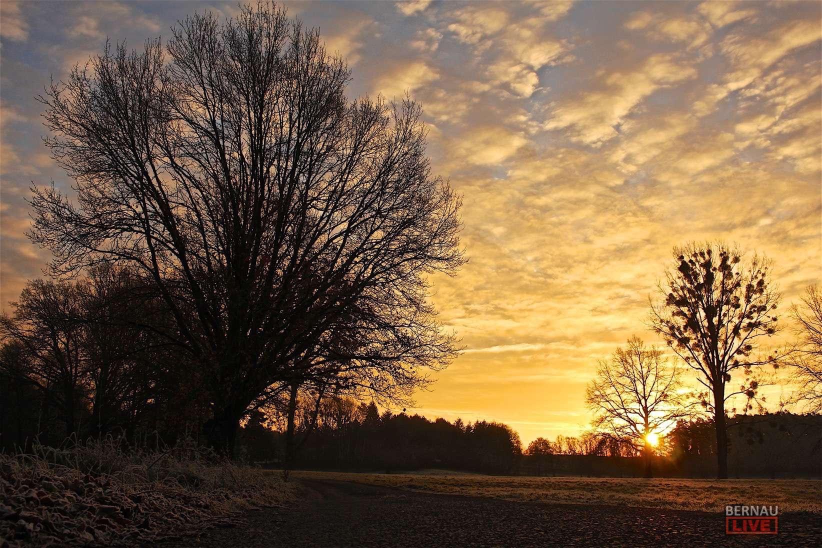 Bernau: Guten Morgen und einen schönen Dienstag - Störungen bei der S2