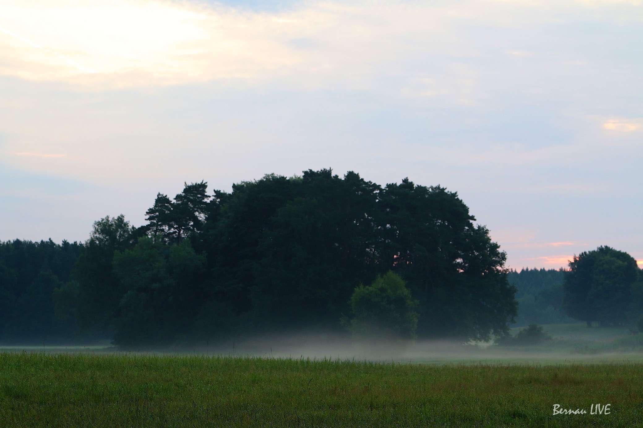 Bernau: Guten Morgen und willkommen in der neuen Woche