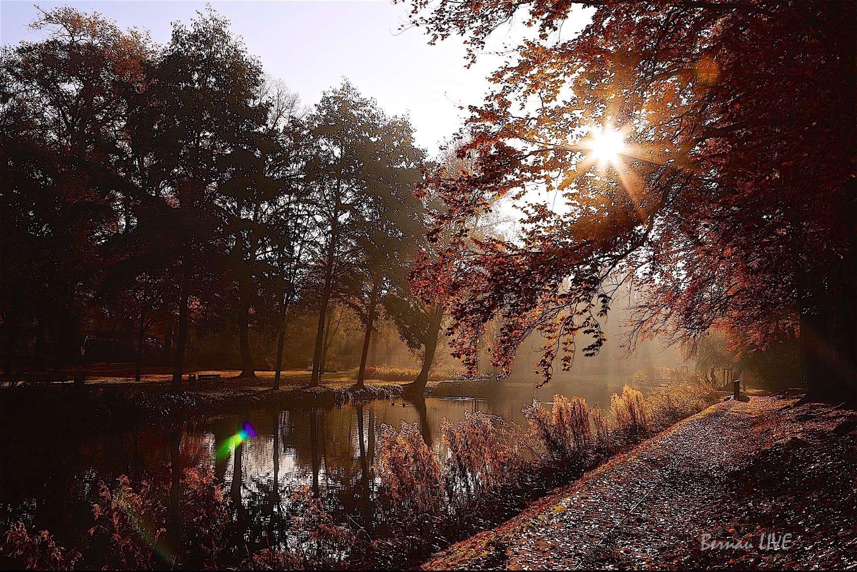Barnim - Bernau: Die Sonne ist da! Guten Morgen