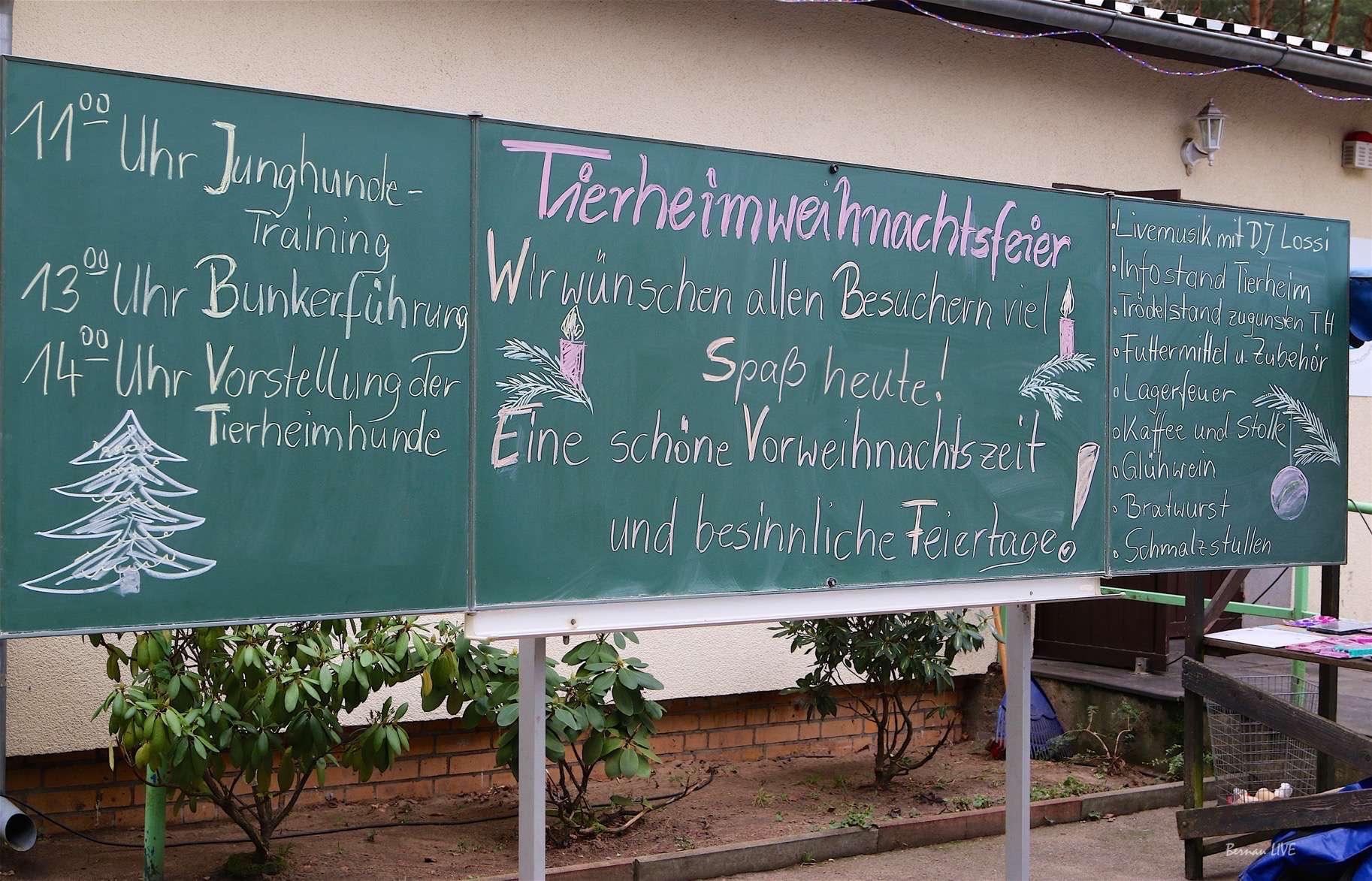 Weihnachten im Tierheim Ladeburg • Bernau LIVE