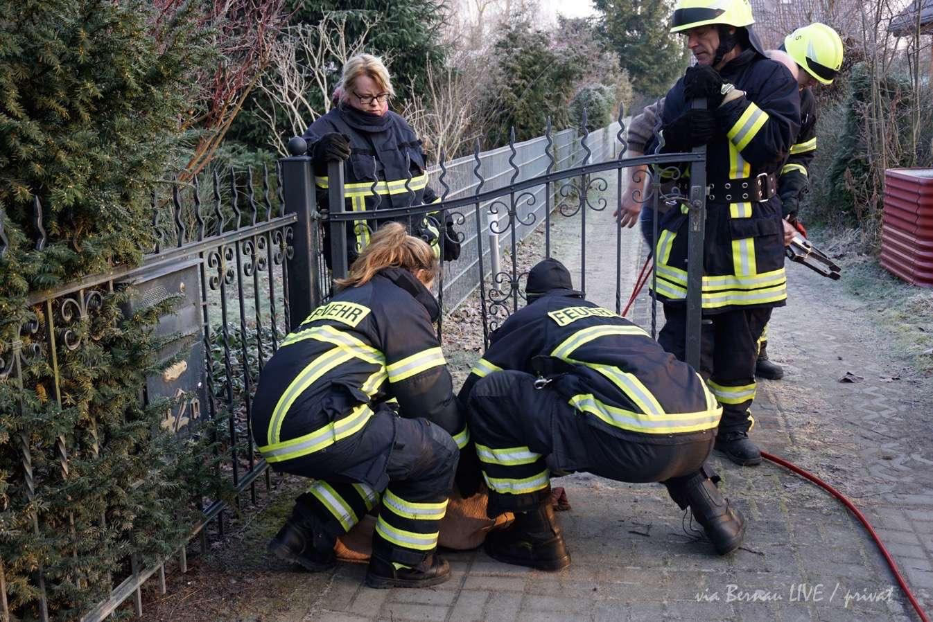 Photo of Reh eingeklemmt und Tränen in den Augen der Feuerwehr