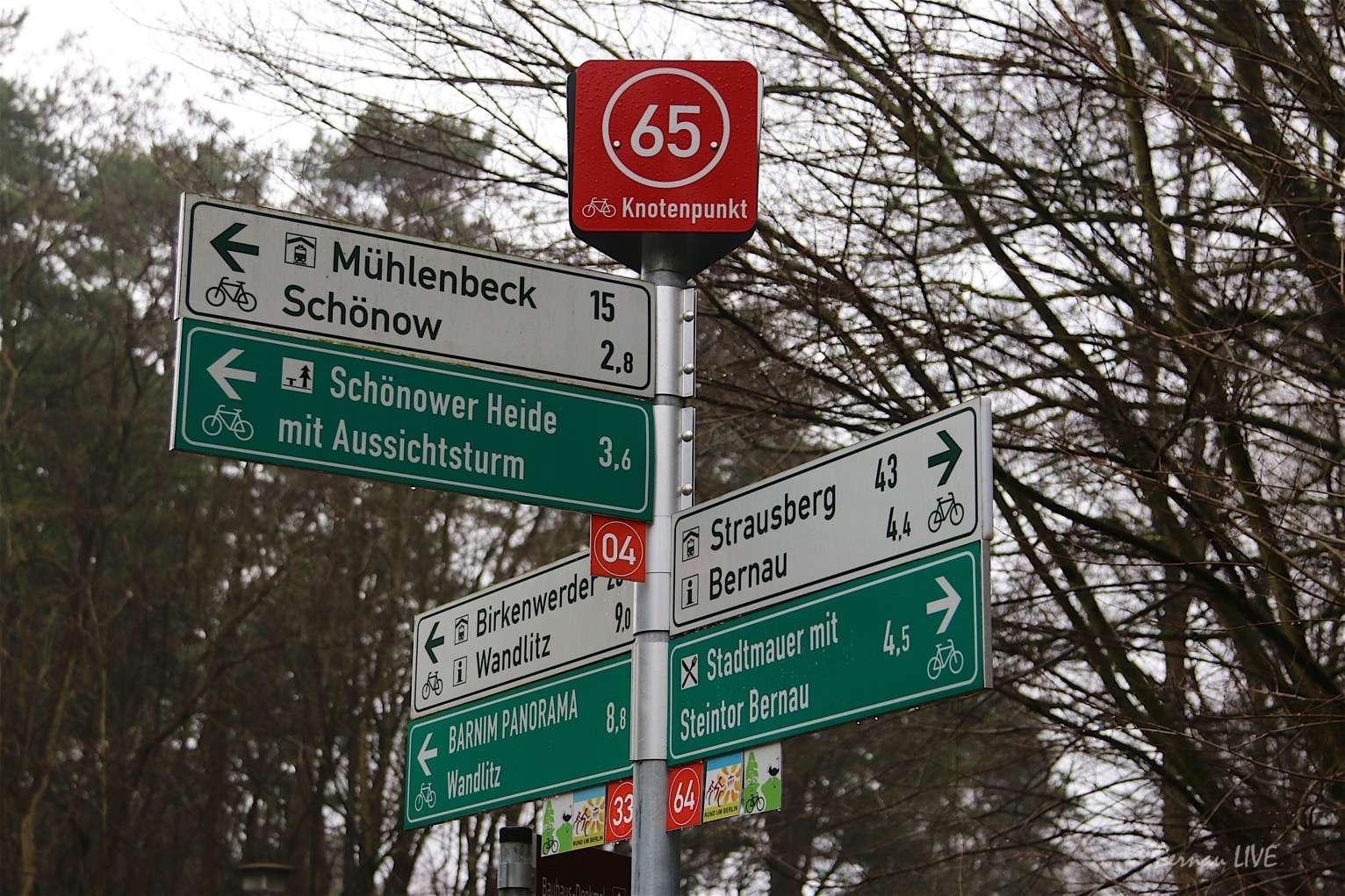 Photo of Baumfällungen und Straßenbauarbeiten in Bernau-Waldfrieden