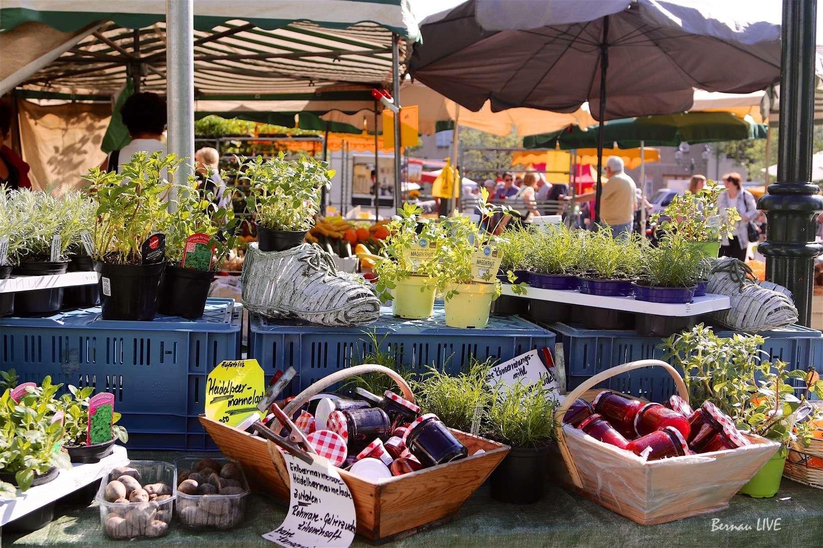 Wochen-Spezialmarkt in Bernau
