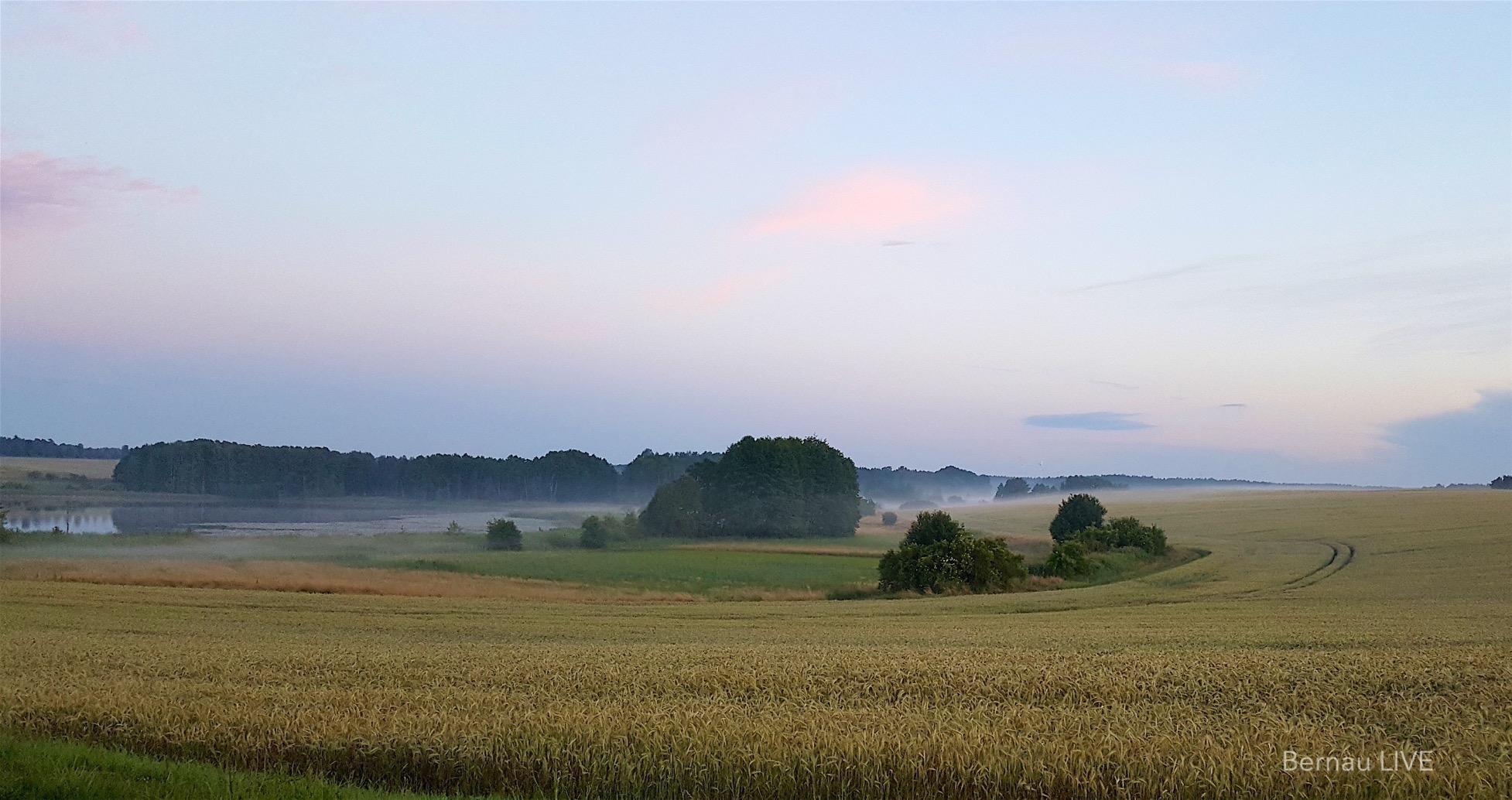 Bernau: Guten Morgen am längsten Tag des Jahres
