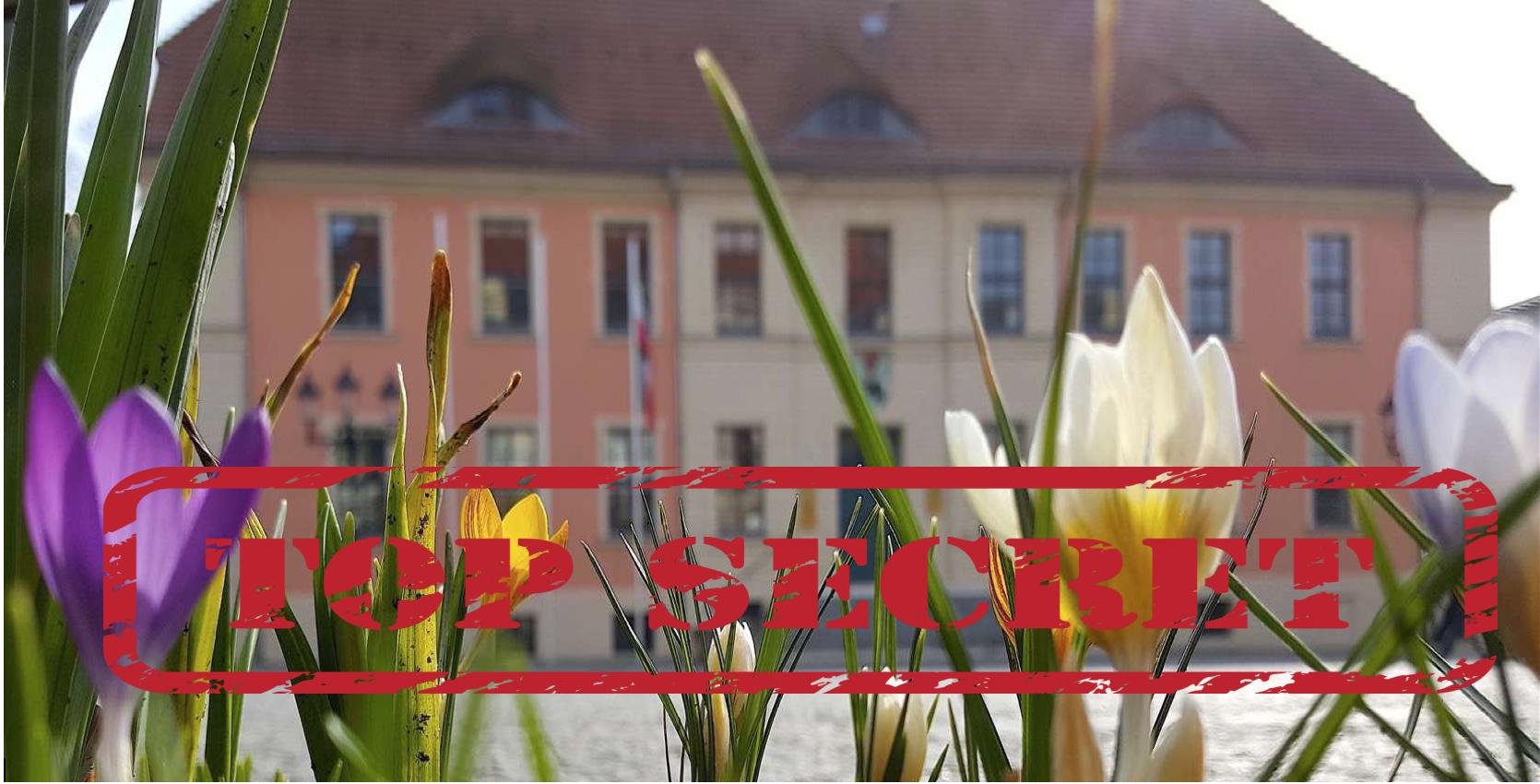 Bernau, Du geheimnisvolle Stadt im verborgenen Mikrokosmos