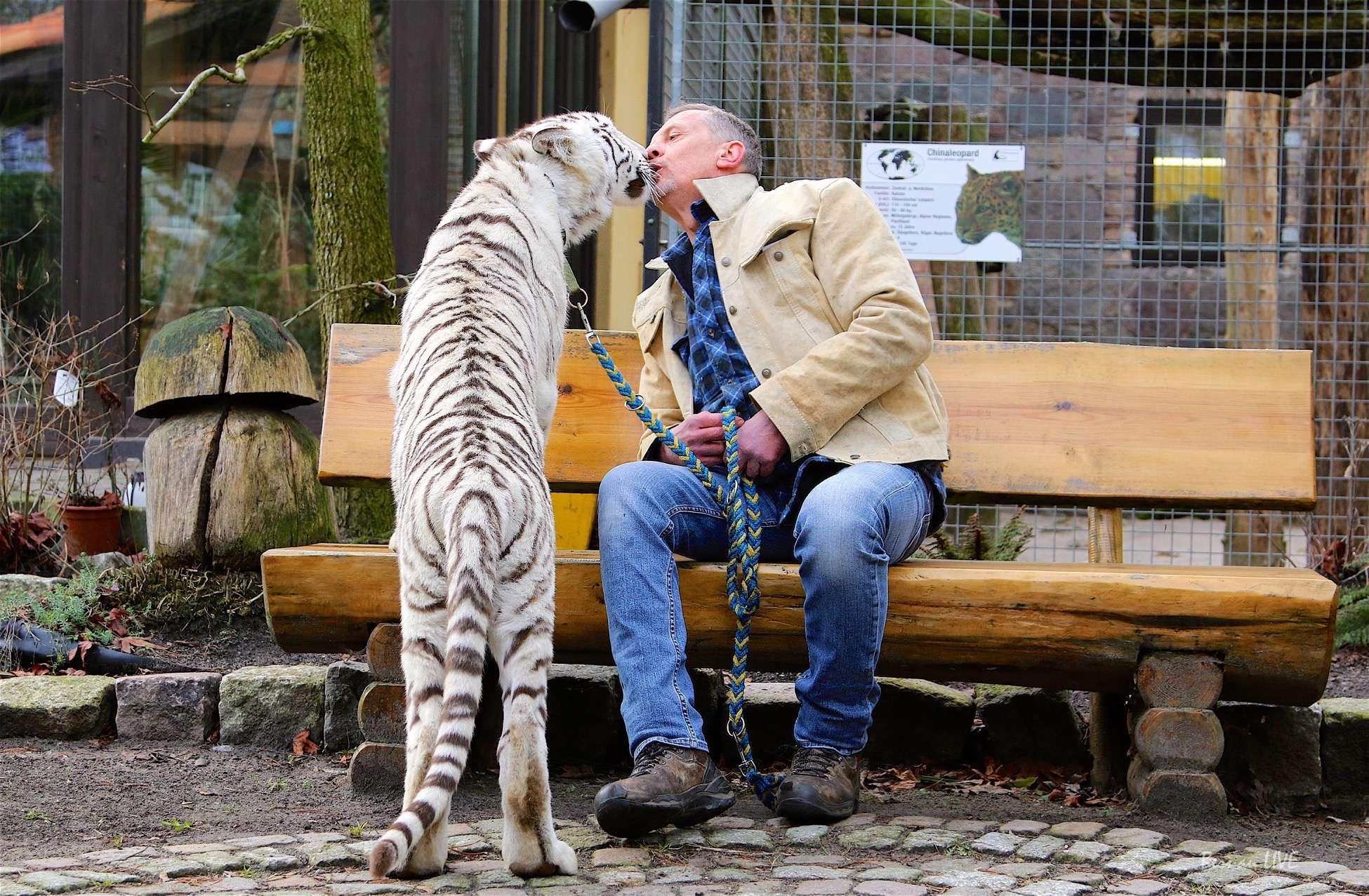 Themenabend im Tierheim Ladeburg - Renato Rafael und Wildkatzen