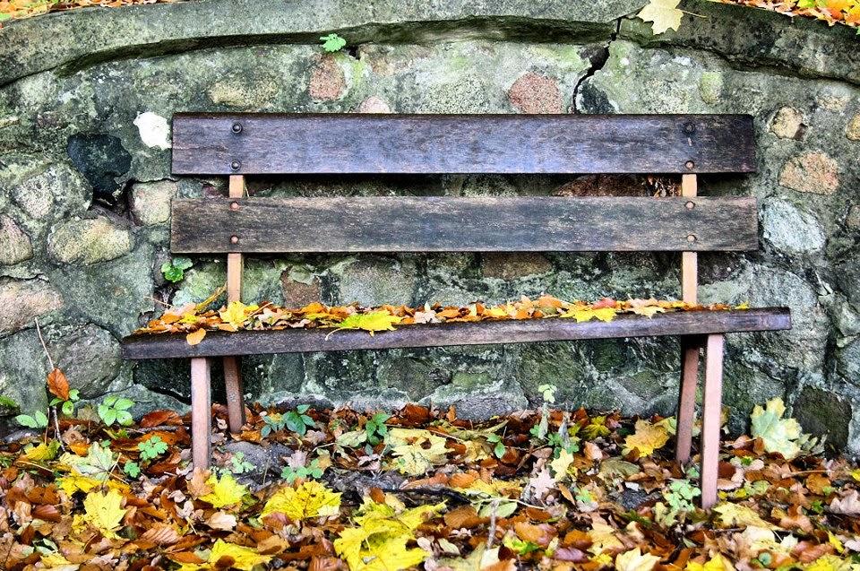Bernau - Herbst: Besser wird´s heute da draußen wohl nicht, Moin!