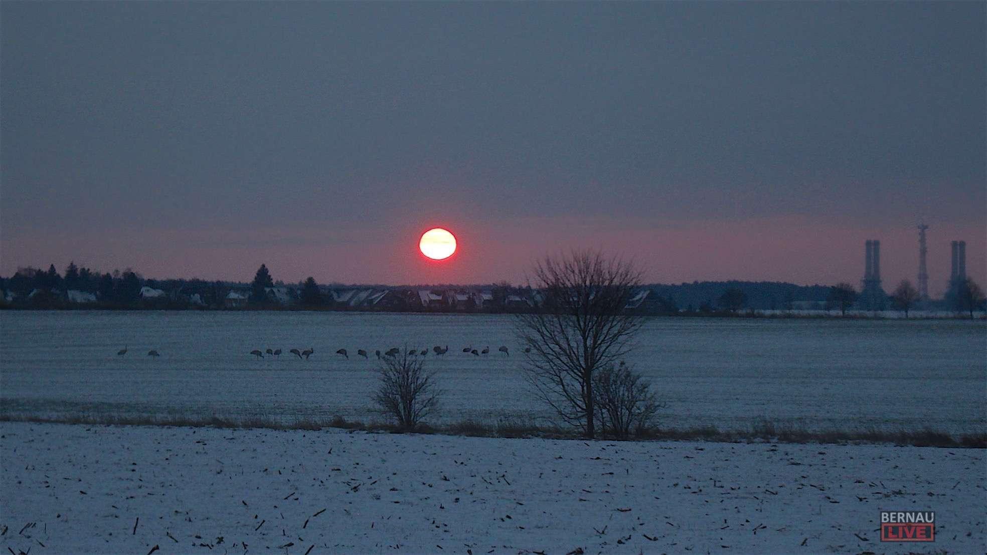 Guten Morgen An Diesem Grauen Kalten Und Windigen Mittwoch