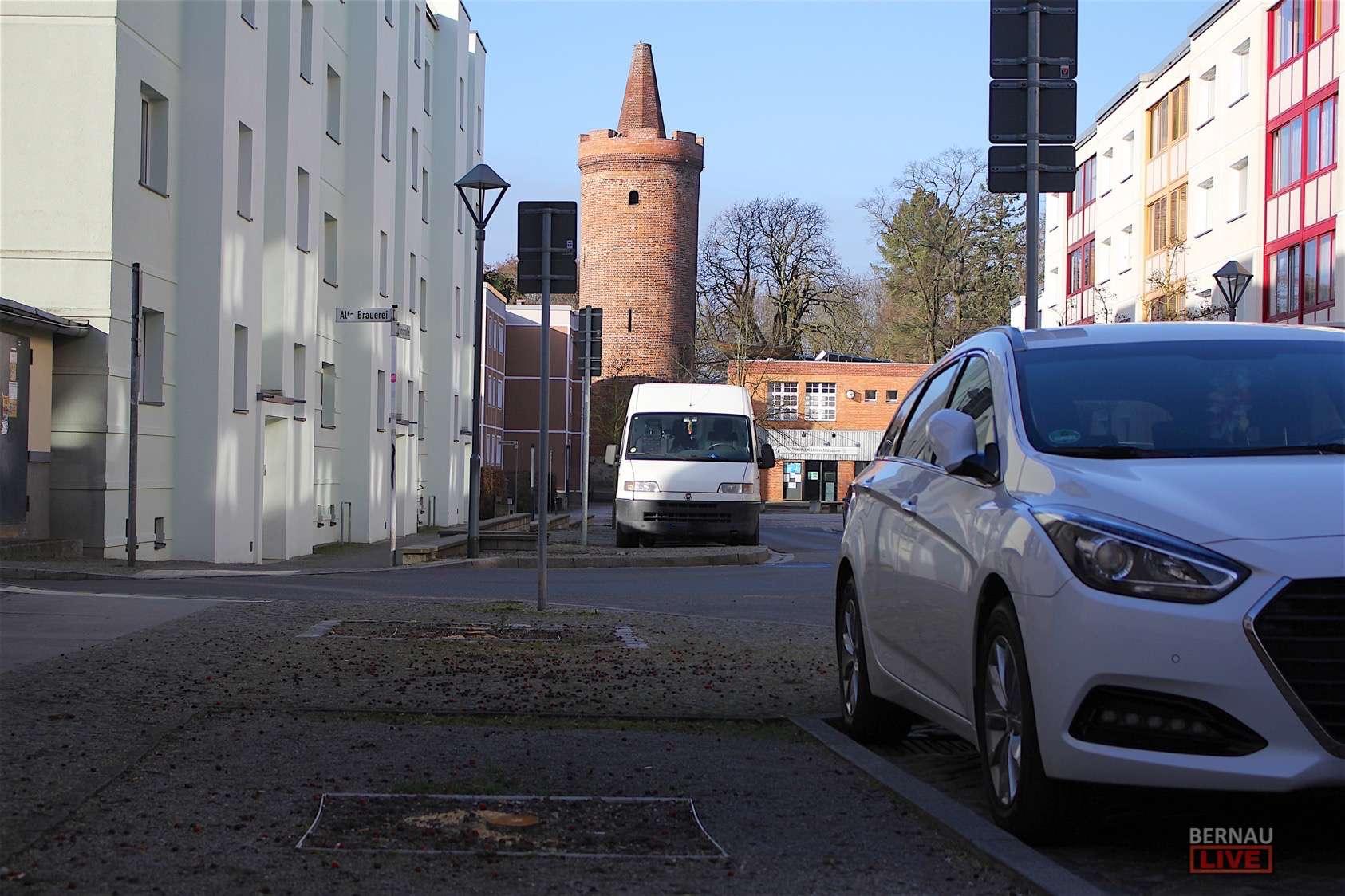 Bernau: Linde an der St.-Marien-Kirche musste gefällt werden