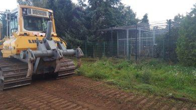 Diego & Co: Baubeginn im Wildkatzenzentrum Felidae