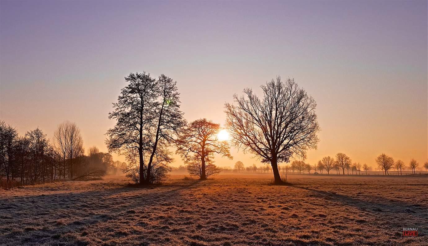 Endlich Freitag Guten Morgen Und Sonnige Grüße Aus Bernau