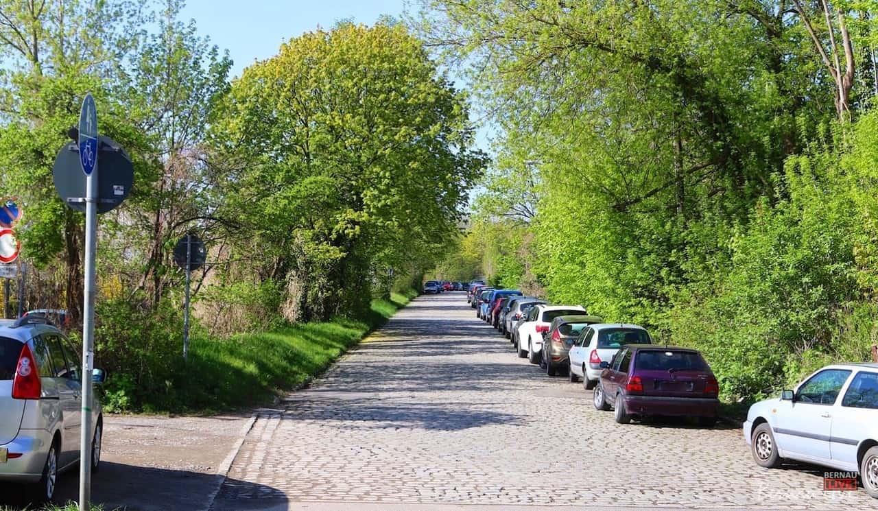 Baumfällungen: Vorbereitungen zum Ausbau der Ladestraße in Bernau
