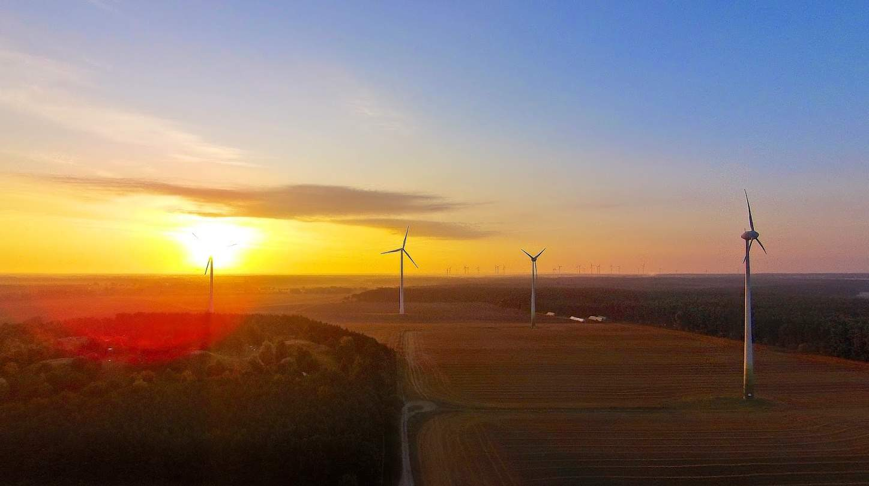 Bernau - Wandlitz: Senat lehnt den Bau von 8 Windkraftanlagen im Liepnitzwald ab