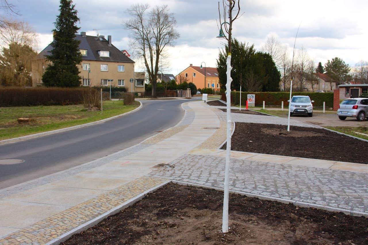 Bernau: 17 Winterlinden in der Ortsdurchfahrt Schönow gepflanzt