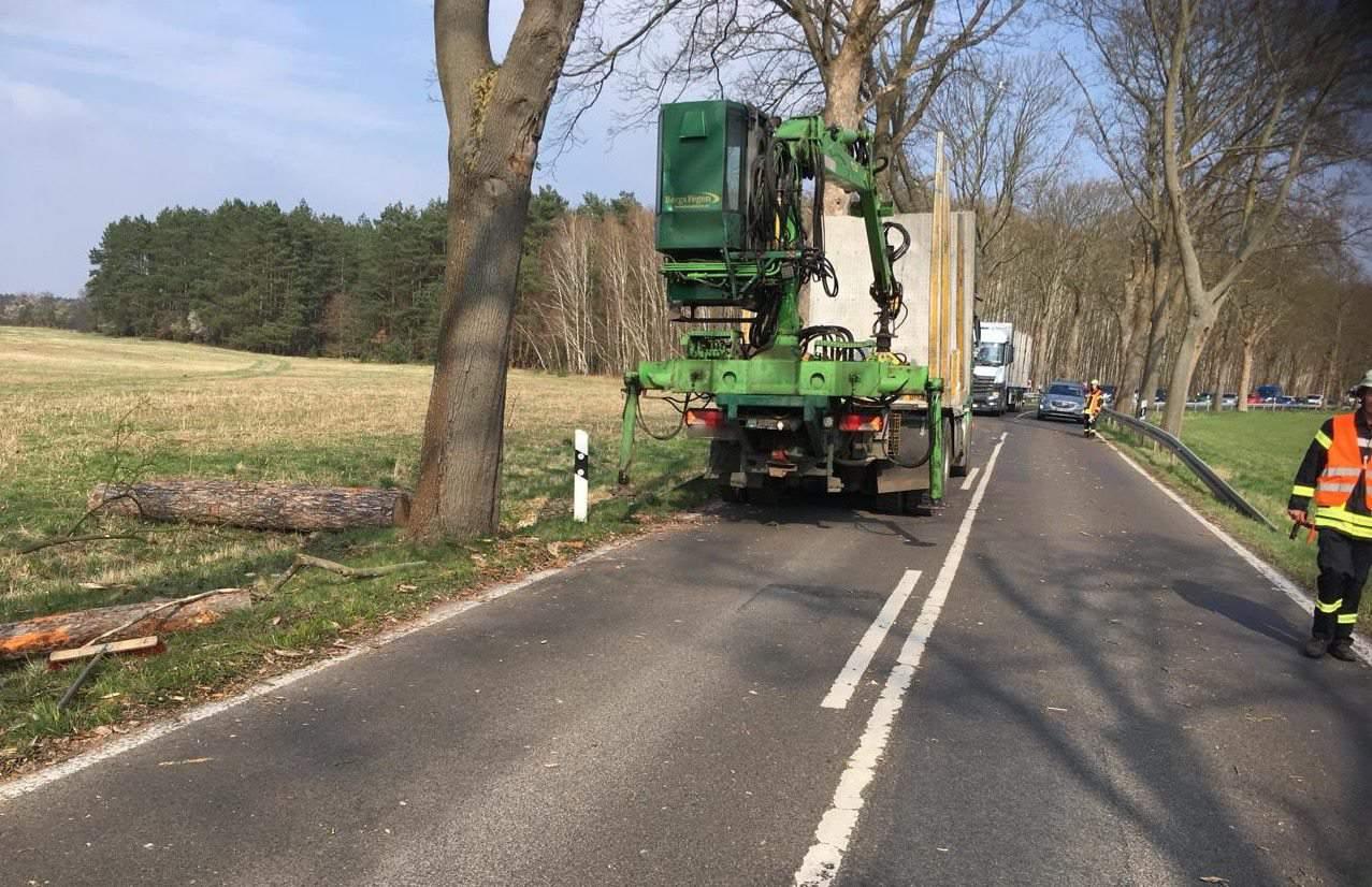LKW verlor Holz zwischen Biesenthal und Melchow - Sperrung aufgehoben