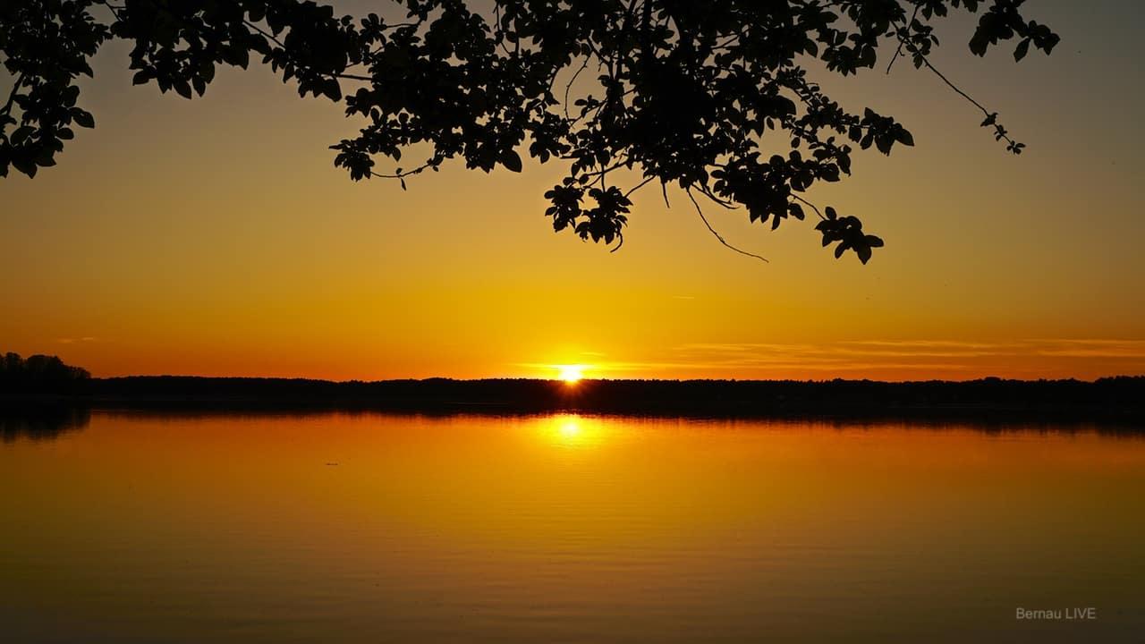 LIVE @ Wandlitzsee - Euch noch einen schönen Sonntagabend