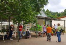 Bernau: Am Samstag präsentierte sich die BIO-Gärtnerei Lobetal