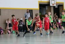 Basketball: 15 Jahre Bärchen-Cup in Bernau bei Berlin