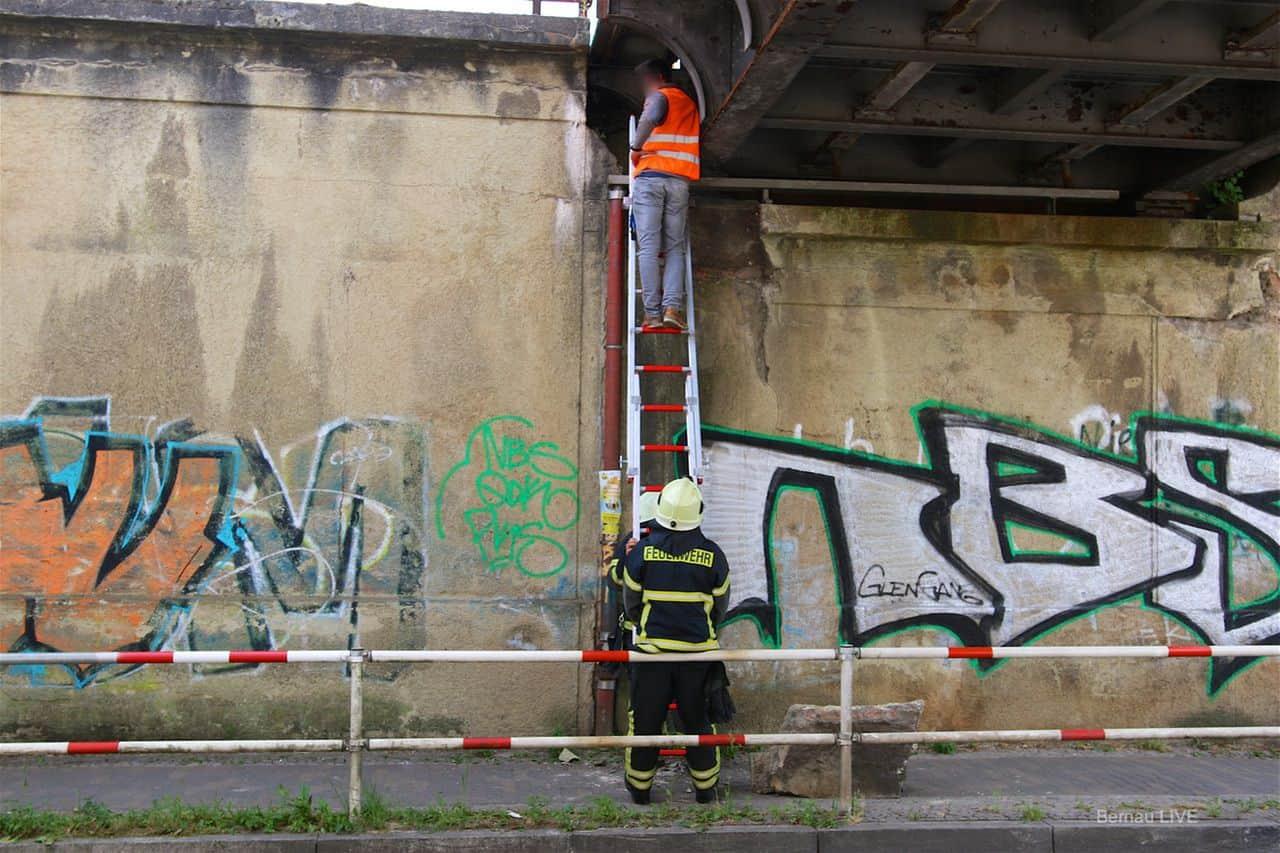 Brückenschaden am Bahnhof - Zepernick - Bahnverkehr unterbrochen