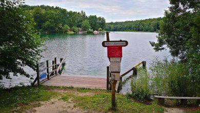 Morgen ist der Sommer wieder zurück, guten Morgen aus Bernau