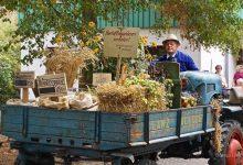 Photo of Klein aber Fein – Lobetal feiert heute sein diesjähriges Erntefest