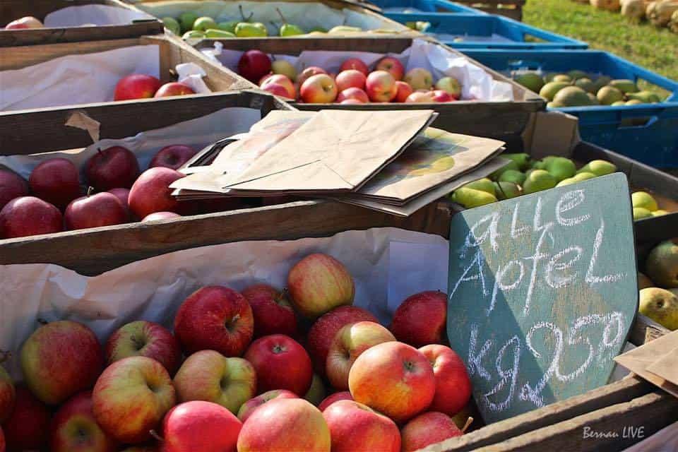 Obsttag im Pflanzencenter der Barnimer Baumschulen Biesenthal