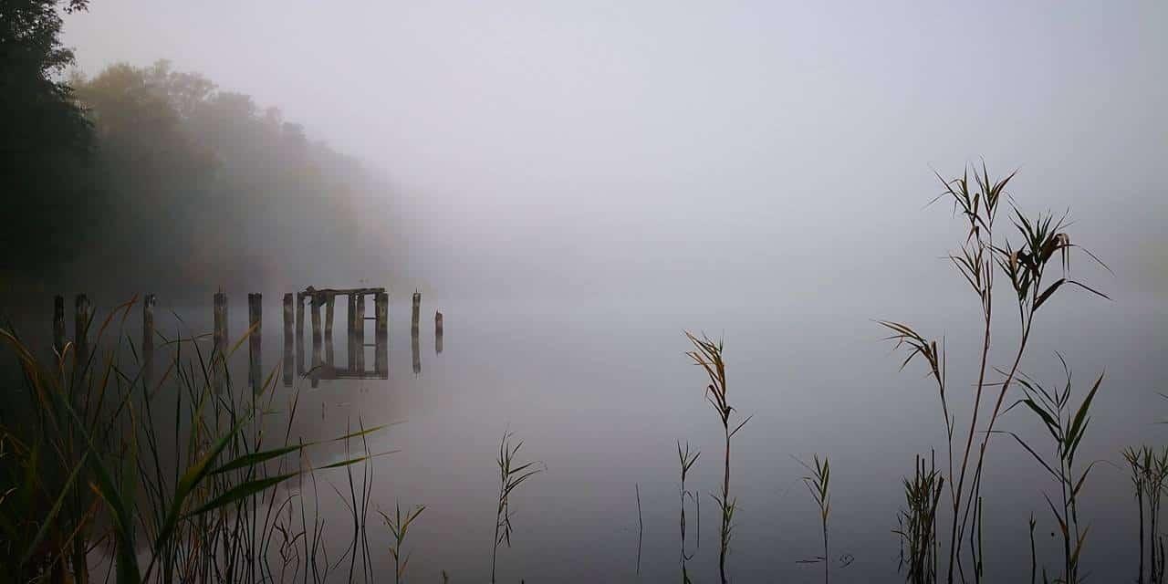 Der heutige Sonntag startet mit dichtem Nebel