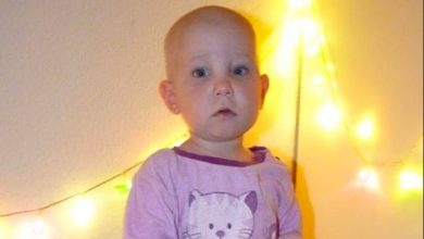 Stammzellspender für die 2-jährige Paula aus Wandlitz gesucht