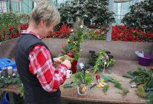 Zwischen Weihnachtssternen, Deko und vielen netten Menschen