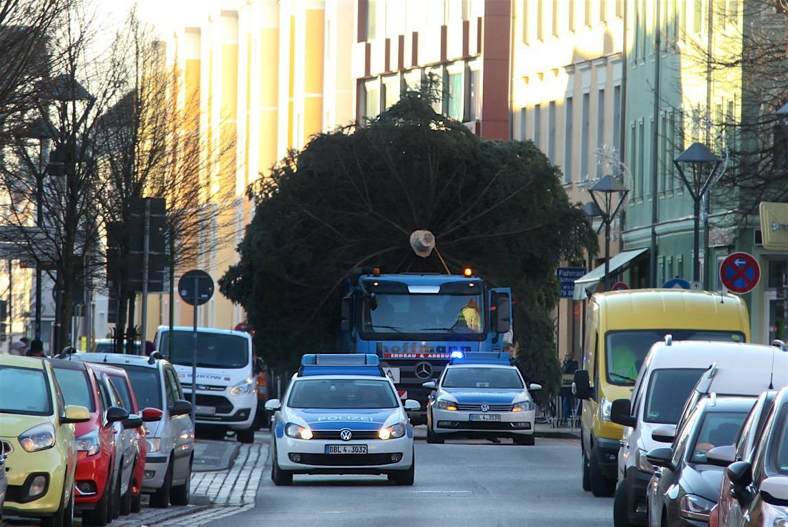 Millimeterarbeit für den Weihnachtsbaum der WOBAU in Bernau