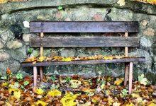 Euch einen ruhigen und entspannten Sonntag in Bernau und Drumherum