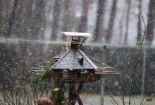 Wenn es doch nur etwas kälter wäre - ho, ho, ho - es schneit in Bernau