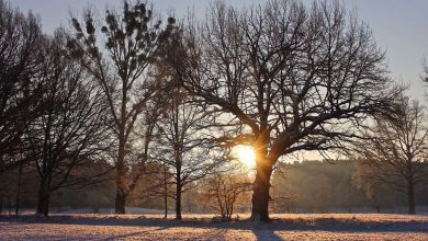 Habt einen winterlich-schönen Sonntag in Bernau und Drumherum