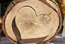 """Broken-Heart-Syndrom"" - Diagnose: gebrochenes Herz"