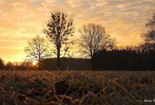 Habt einen stressfreien Dienstag in Bernau und Drumherum