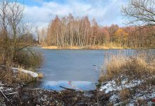 "Heute Abend: Bernau.Pro.Klima - Workshop ""Gewässer in Bernau"""
