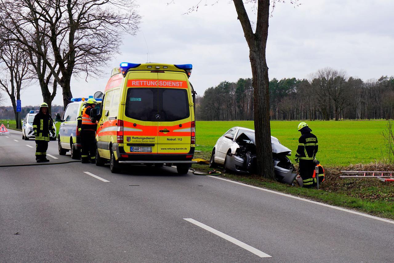 Schwerer Verkehrsunfall L30 zwischen Schönow und Schönwalde