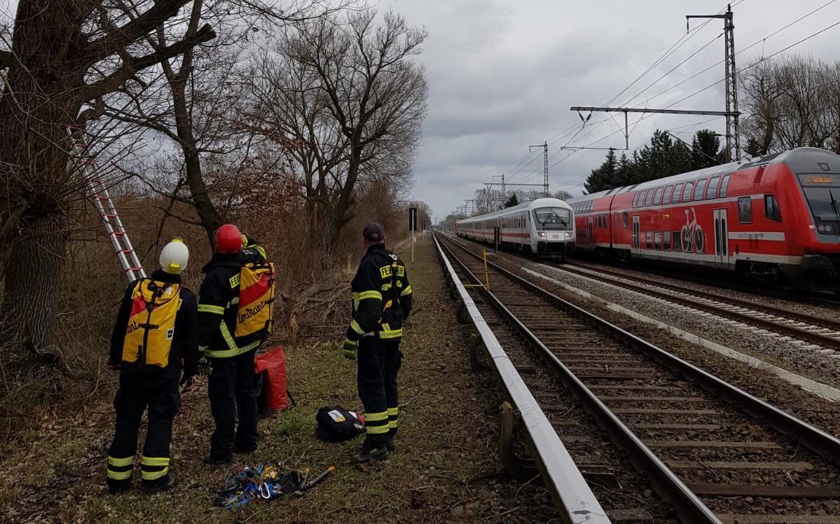Baum auf Gleis - Sperrung Bahnstrecke zwischen Zepernick und Bernau