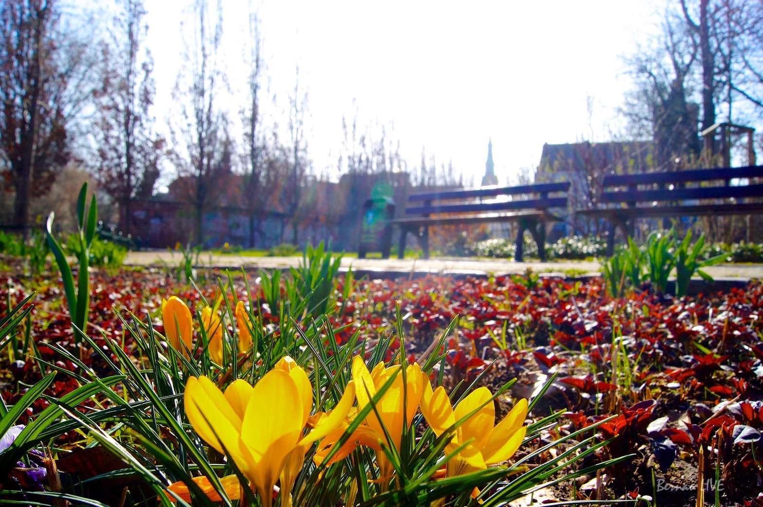 Bernau LIVE wünscht allen ein schönes Wochenende - Veranstaltungen
