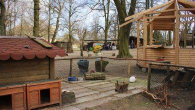 Bernau: Kinderbauernhof in Börnicke droht die Schliessung