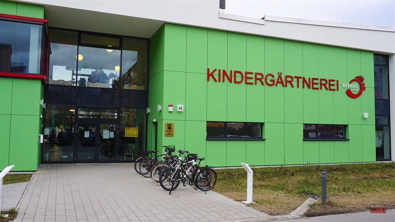 """Die """"Kindergärtnerei"""" in Bernau lädt heute Nachmittag zum Blütenfest"""