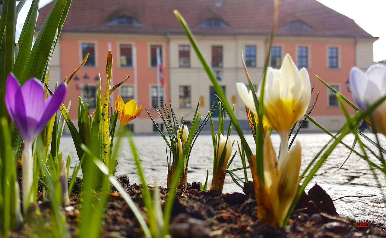 Ein schönes Wochenende in Bernau und Drumherum - Veranstaltungen
