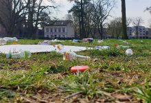 Müllhalde Bernauer Stadtpark: Feiern gerne, aber bitte nicht so!