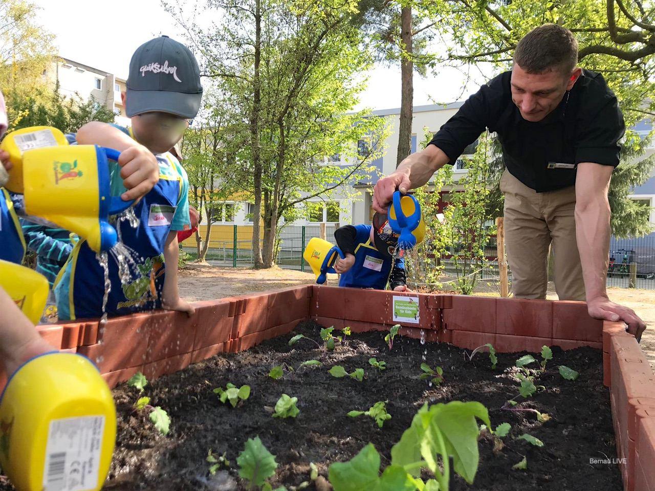 """Gemüsebeet für den Kindergarten """"Regenbogen"""" in Bernau"""
