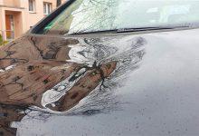 Fahrzeuge in Bernau beschädigt + Einbruch in Schönow - Zeugen gesucht