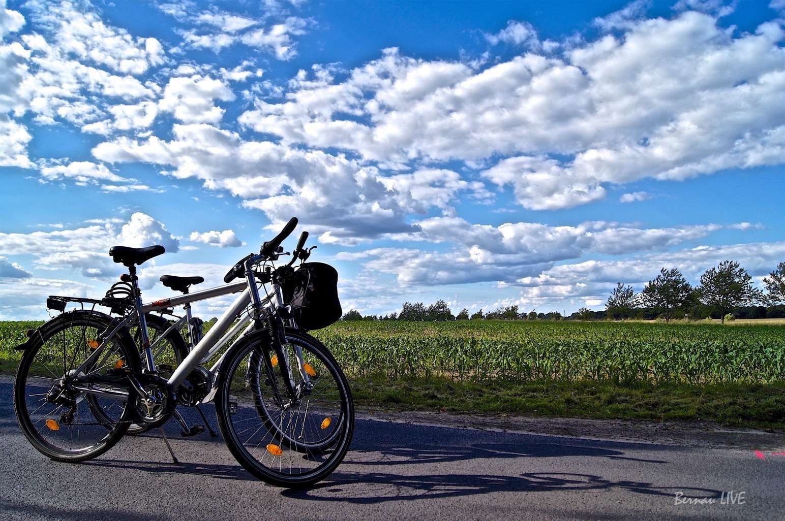 Fahrrad DSC01153 2