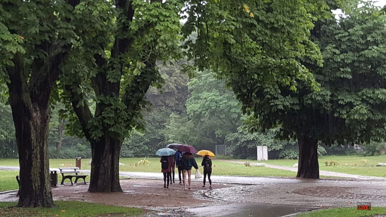 Endlich ein bisschen Regen in der Region - Moin aus Bernau