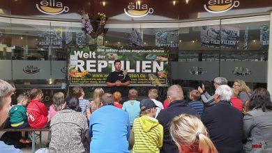 Bis zum 26. Juli 2019 - Reptilienausstellung im Forum Bernau