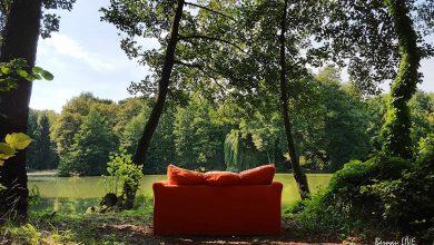 Der Sommer ist dann mal im Anmarsch - Guten Morgen aus Bernau